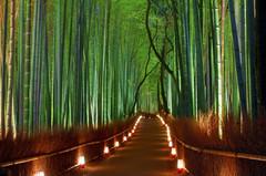 Неподалеку Киото расположилась удивительной красоты достопримечательность