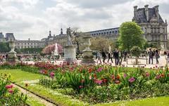 А Вы знали, что в сердце Франции находится уникальная достопримечательность - Сад Тюильри?