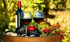 Праздник вина в итальянском городе Аоста