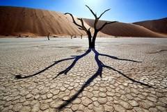 А Вы знали, что в Намибии расположилась удивительная мертвая долина Дидвлей, поражающая специфическим очарованием неземных пейзажей?