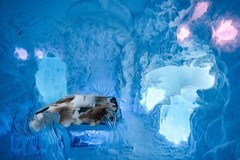 Icehotel!